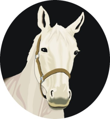 't Witte Paard